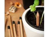 Creion reciclabil cu seminte